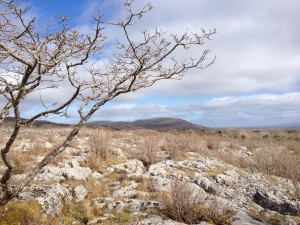 Burren, Wild Atlantic Way